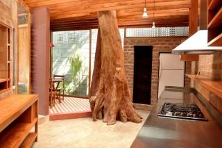 Кухня, построенная вокруг дерева
