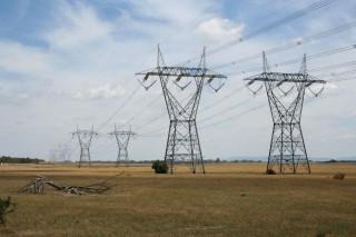 Ученые пришли к выводу, что линии электропередач отпугивают животных