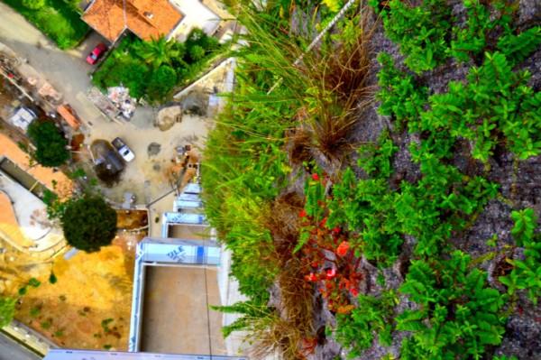 Вертикальный сад высотой 92 метра