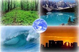 Мир отметил День экологических знаний