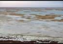 Аральское море скоро станет историей?