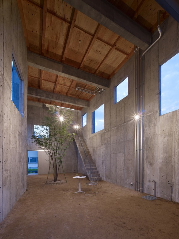 Минималистичный дом с растущим внутри деревом