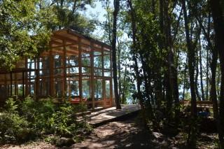 Прозрачный дом в лесу