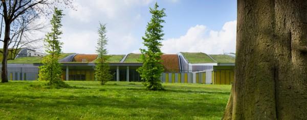 """""""Зеленая"""" крыша для автотранспортного колледжа"""