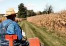 Количество ферм в США с альтернативным энергоснабжением растет, но их количество все еще ничтожно