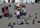 В Вене будут штрафовать за кормление голубей