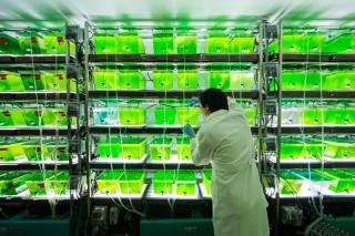 Биологи против гипотезы Дарвина