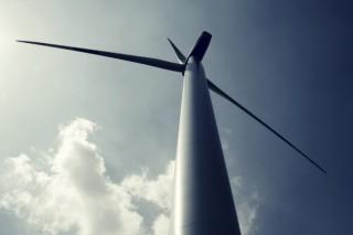 Falcon Capital готов вложиться в российскую ветроэнергетику