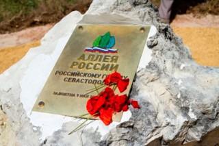 Каждый регион России выберет свой зеленый символ