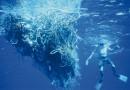 Президент США Обама хочет защитить Тихий океан от вмешательства людей, создав в нем крупнейший заповедник
