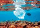 Голландский студент придумал машину по очистке океана