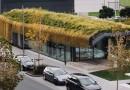 Лужайка на крыше