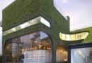 «Зеленые» дома положительно влияют на здоровье их жильцов