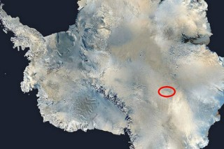 Льды Антарктики скрывали тысячи новых и неизведанных форм жизни