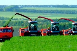 Украина будет повышать энергетическую независимость за счет сельского хозяйства