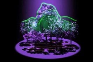 Новый спутник NASA создаст карту лесов в 3D