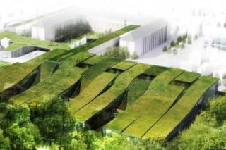 Что такое зеленые крыши