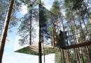 Treehotel: зеркальный домик на дереве