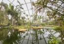 Тропический зимний сад в Орхусе
