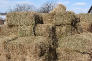 В Украине могут наладить производство биотоплива из соломы по польской технологии