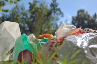 В Калифорнии запрещают полиэтиленовые пакеты