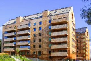 В Карелии могут появиться первые в России многоэтажные деревянные дома