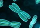 Курение приводит к потере Y-хромосом у мужчин