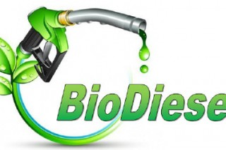 Во Франции готовятся законодательно обозначить количество биодизеля в общем объеме транспортного топлива