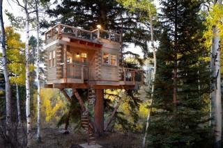 Дом на дереве с террасой на крыше