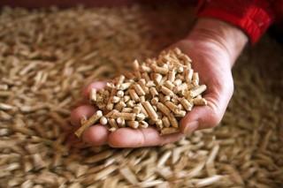Во Владимирской области строят завод по производству топливных пеллет