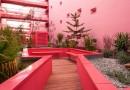 Пятиэтажка с розовыми стенами и садом на крыше