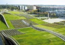 Зеленые поля на крыше университета