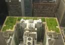 Зеленые крыши станут обязательным элементом объектов коммерческой недвижимости во Франции
