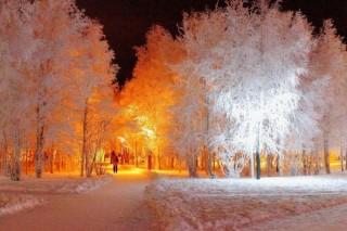 Дороги Заполярья будут освещать энергией солнца и ветра