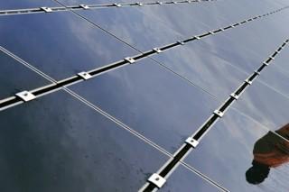 Владельцев коммерческих зданий во Франции обязали покрывать крыши или солнечными панелями, или растениями