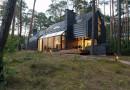 Черный дом в сосновом лесу