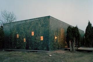Зеленый «камуфляж» для фасада