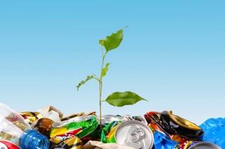 Переработка отходов – это выгодно и экологично
