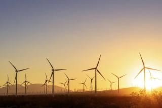 Как в Индии борются с дефицитом энергии