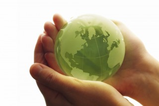 Экологическая культура – почему так важно прививать ее населению?