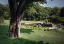 «Зеленый» бассейн для загородной виллы