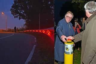 Голландские инженеры осветили участок автодороги при помощи энергии растений
