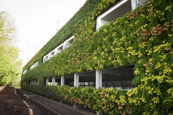 Крупнейший в Европе вертикальный сад