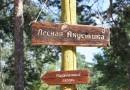 В Тамбовсвой области состоялся фестиваль «Лесная акустика»