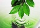 Власти Татарстана будут платить за свидетельства экологических преступлений