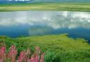 Ландшафты – как сберечь участки природы, нетронутые рукой человека